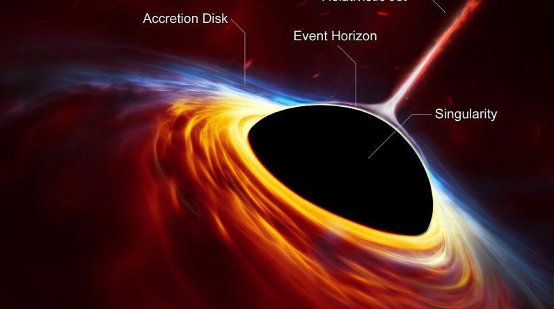 Black Hole Anatomy