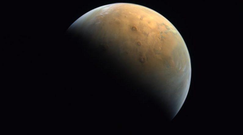 Nowe badania wykazały, że ludzie będą mogli rozmnażać się na Marsie, ponieważ plemniki mogą tam żyć nawet 200 lat