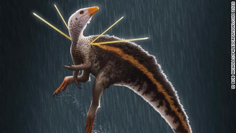 Dinozaur nosił imponującą grzywę i miał wystające z ramion wstążki