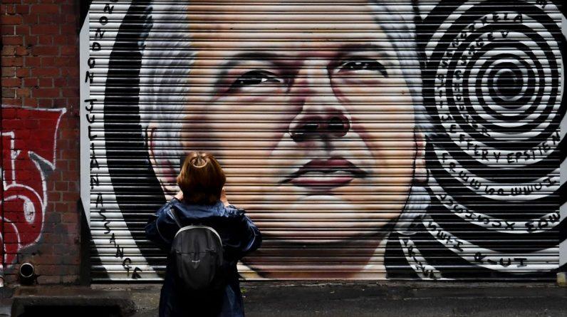 Sąd w Londynie rozważa apelację USA w sprawie ekstradycji Assange'a |  międzynarodowy